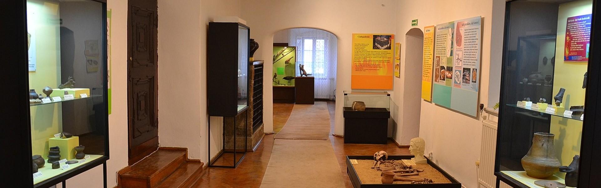 Muzeum Ślężańskie